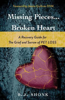 Missing Pieces...Broken Heart