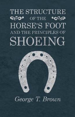STRUCTURE OF THE HORSES FOOT &