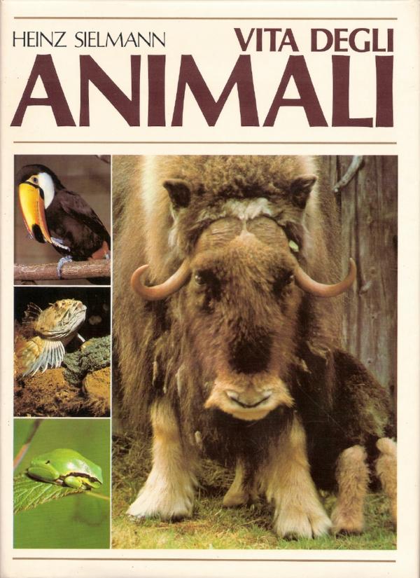 Vita degli animali vol. 6