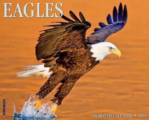 Eagles 18-Month 2015...