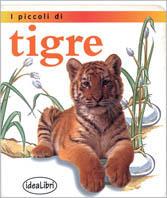 I piccoli di tigre