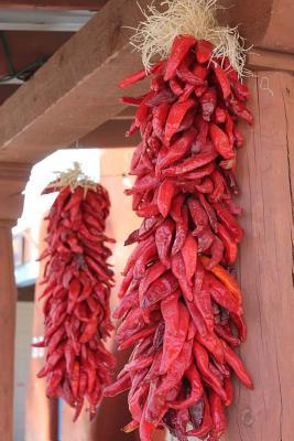 New Mexican Red Chile Journal