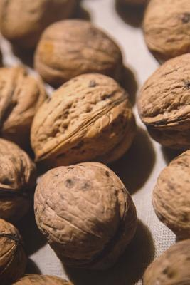 Walnuts in the Shell Journal