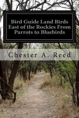 Bird Guide Land Birds East of the Rockies from Parrots to Bluebirds