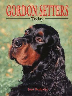 Gordon Setters Today