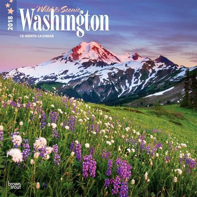 Wild & Scenic Washington 2018 Calendar
