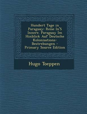 Hundert Tage in Paraguay