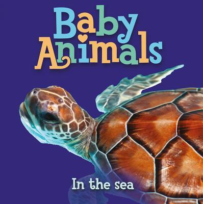Baby Animals in the ...