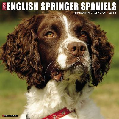Just English Springe...