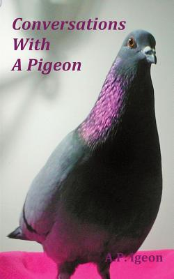 Conversations with a Pigeon