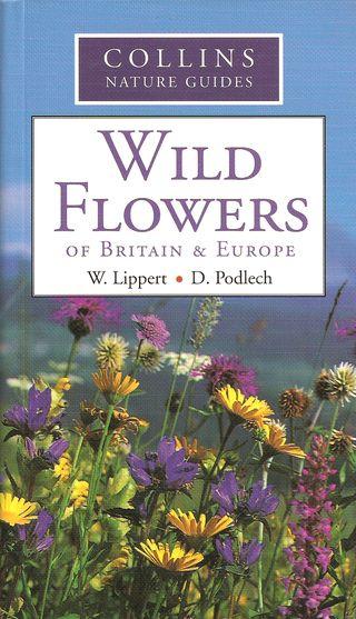 Wild Flowers of Brit...