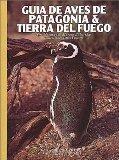 Aves de la Patagonia
