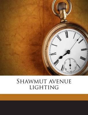 Shawmut Avenue Lighting