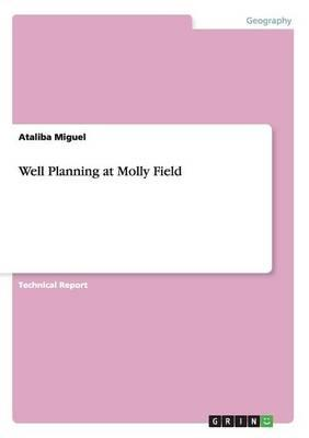 Well Planning at Molly Field