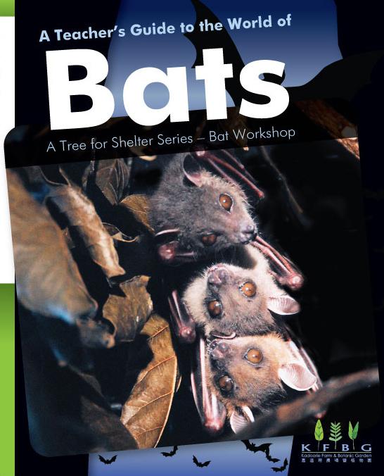 A Teacher's Guide to the World of Bats