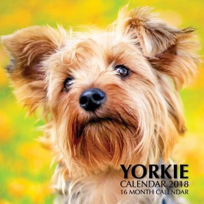 Yorkie Calendar 2018