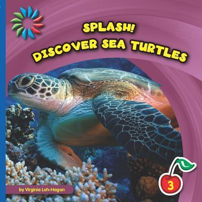 Discover Sea Turtles