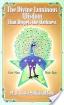 The Divine Luminous Wisdom