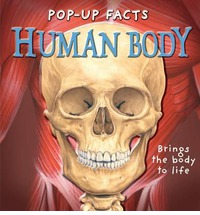 Pop-up Facts: Human ...