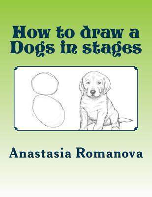 How to Draw a Dogs in Stages