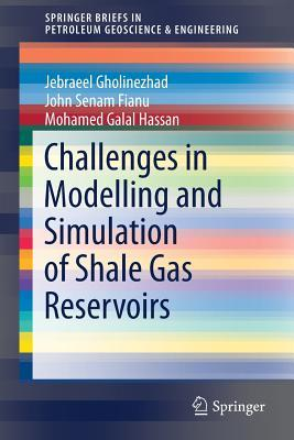 Challenges in Modelling and Simulation of Shale Gas Reservoirs