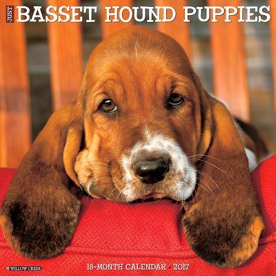Just Basset Hound Pu...