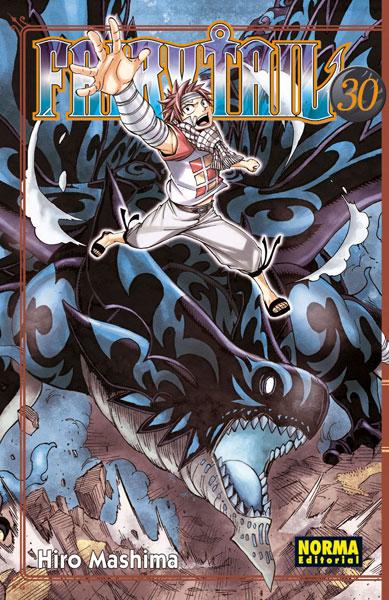 Fairy Tail #30
