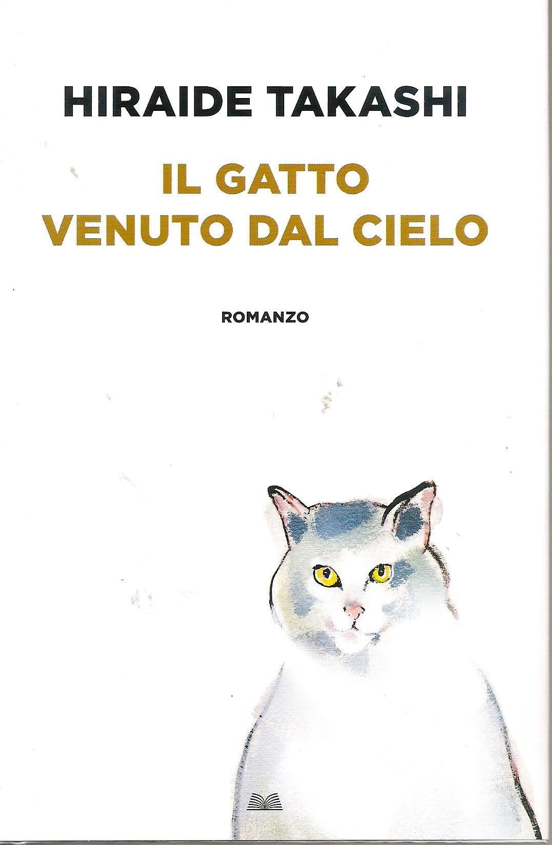 Il gatto venuto dal cielo