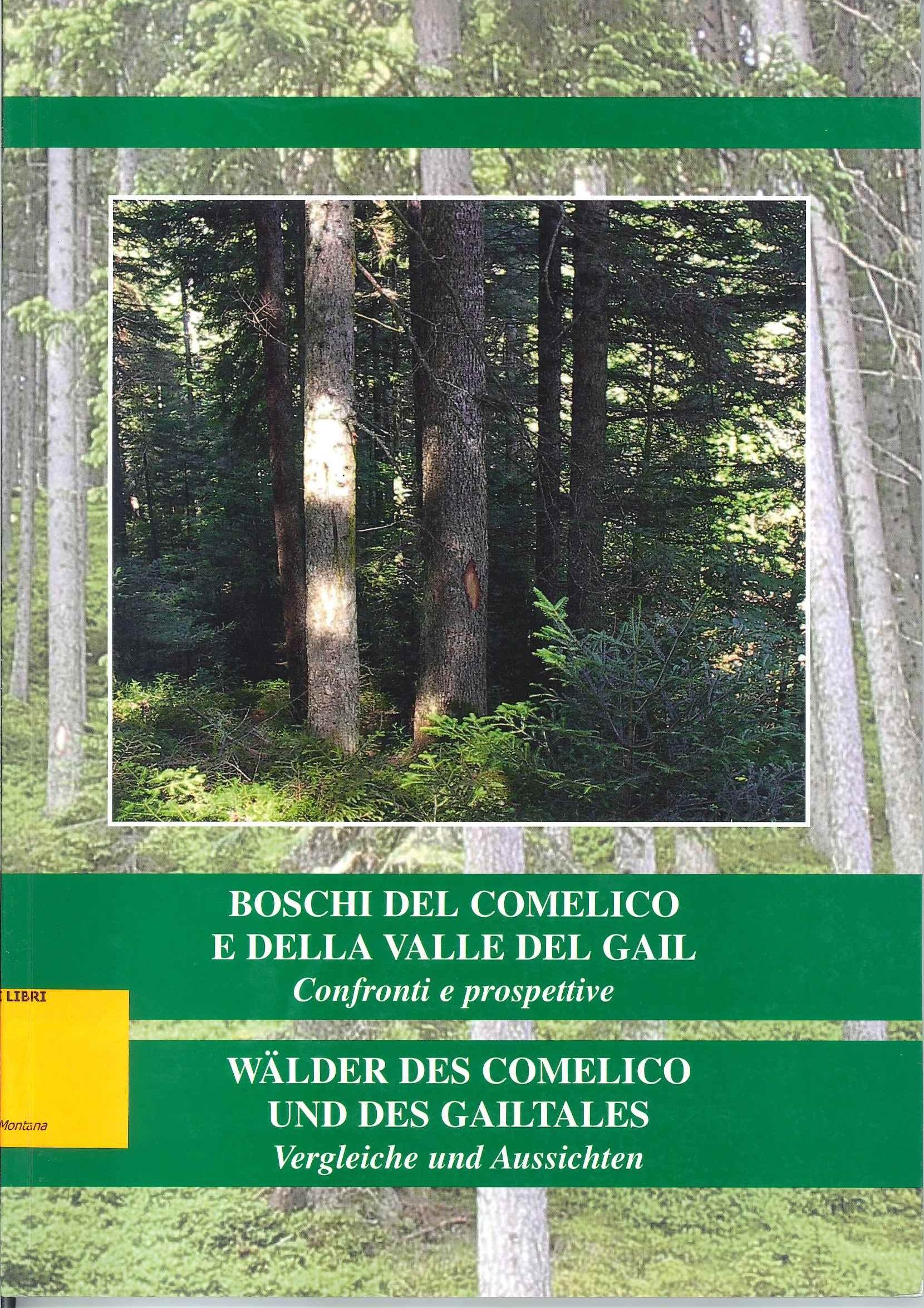 Boschi del Comelico e della Valle del Gail - Wälder des Comelico und des Gailtales