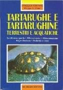Tartarughe e tartarughine terrestri e acquatiche
