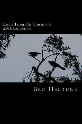 Essays from the Crossroads