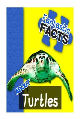 Fantastic Facts About Turtles