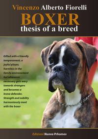 Boxer. Thesis of a breed