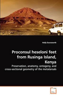 Proconsul Heseloni Feet from Rusinga Island, Kenya
