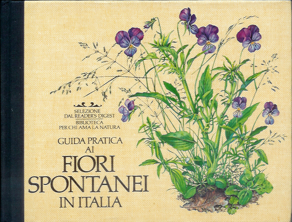 Guida pratica ai fiori spontanei in Italia