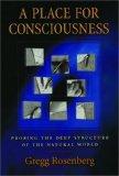 A Place for Consciousness