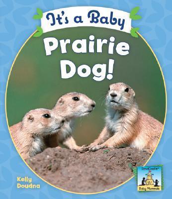 It's a Baby Prairie Dog