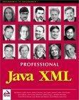 Professional Java XM...