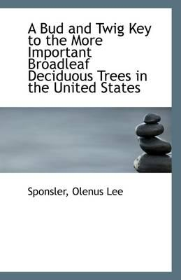 A Bud and Twig Key to the More Important Broadleaf Deciduous Trees in the United States