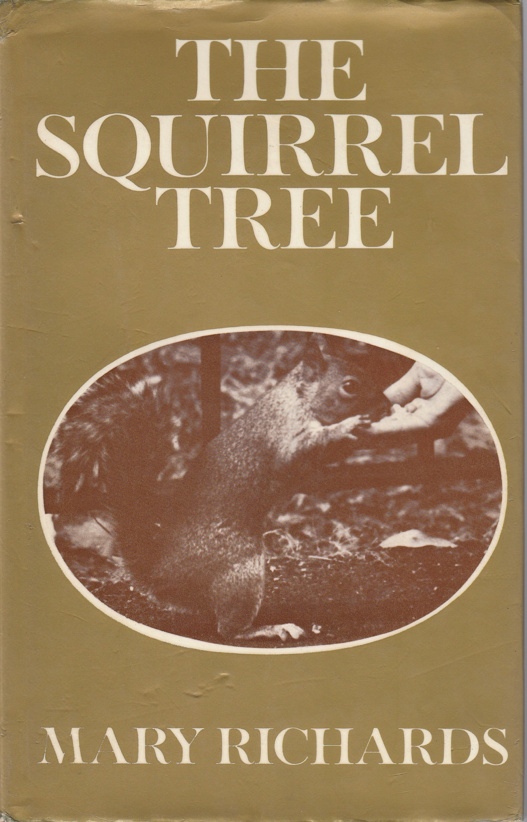 The Squirrel Tree