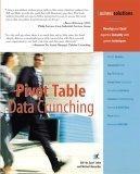 Pivot Table Data Crunching