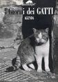 I giorni dei gatti