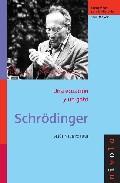 Schrödinger, una ecuación y un gato
