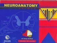 Neuroanatomy Primer
