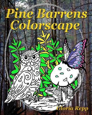 Pine Barrens Colorscape