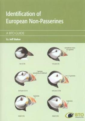 Identification Guide of European Non-Passerines