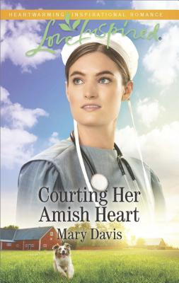 Courting Her Amish H...
