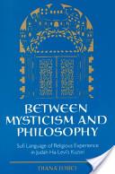 Between mysticism and philosophy