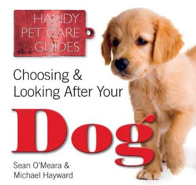 Choosing & Looking After Your Dog