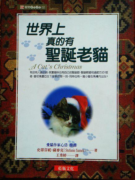 世界上真的有聖誕老貓